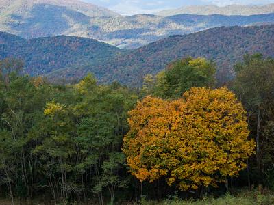 Fall at Hazeltop ridge Overlook, Skyline drive
